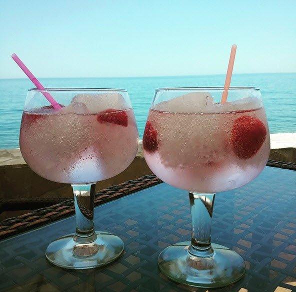 Gin tonic PalomaTrends
